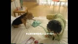 東海銀行 CM 鈴木杏樹.