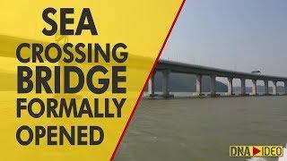 World's largest sea-crossing bridge between Macau, Hong Kong and China opens