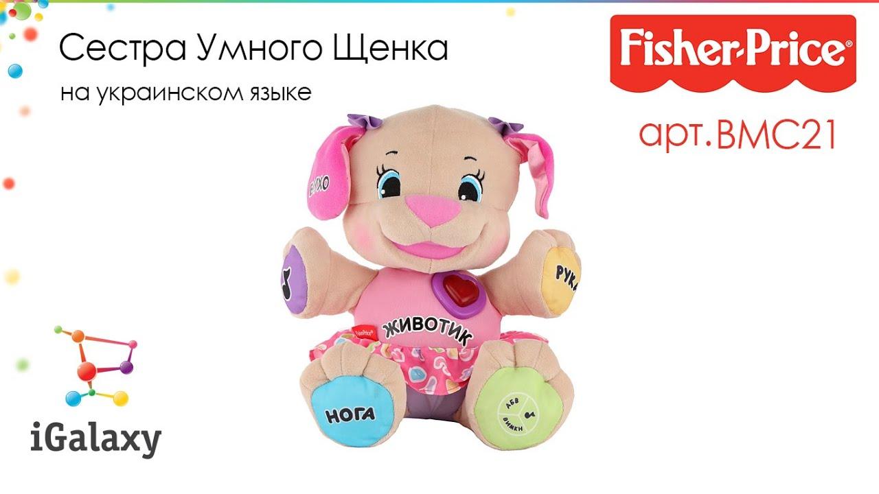 Игрушка fisher price ученый щенок первые слова fpn77 по цене 2789. 00 руб в интернет магазине детский мир. Описание, отзывы, аксессуары,