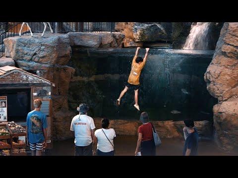 JUMPING INTO BASS PRO FISH TANK!?!