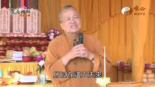 【混元禪師隨緣開示80】  WXTV唯心電視台