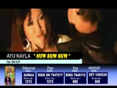Auw  Auw   Auw   Dangdut House Remix   AYU NAYLA   mp4   YouTube