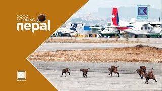 Condition of Tribhuwan International Airport | Good Morning Nepal - 27 April 2018