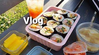 [자취Vlog] 김밥 만들고 피크닉한 브이로그 (+ 찜…