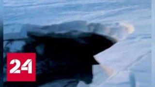 В Красноярском крае появилось аномальное озеро - Россия 24