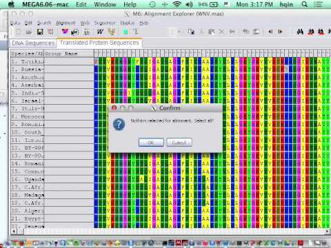 Using MEGA to generate phylogeny of  protein-coding genes
