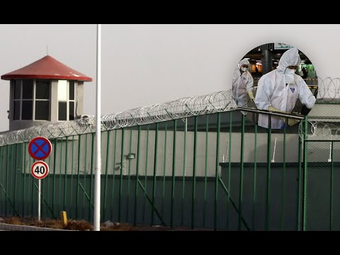 فيروس كورونا يهدد أكثر من مليون إيغوري في معتقلات شينجيانغ  - نشر قبل 3 ساعة