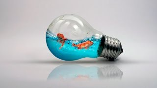 Photoshop - Peixes dentro da lampada