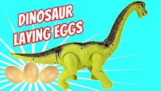 Dinosaur Walking and Laying Eggs Toy - Dinosaurs Toys For Kids