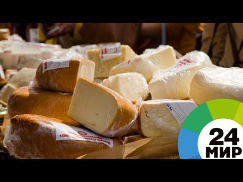Сырная жизнь: жительница Костромы готовит дома 30 сортов деликатеса - МИР 24