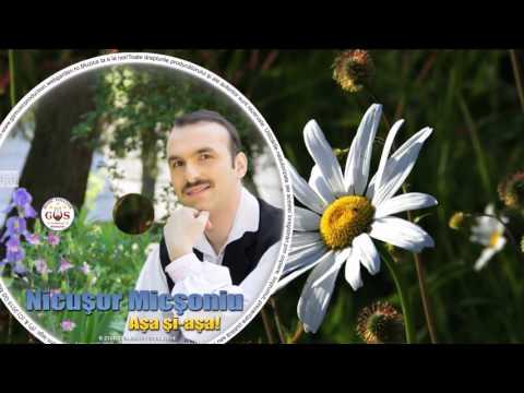 NICUSOR MICSONIU - NU E BARBAT SA NU POATA (OFFICIAL AUDIO) NOU