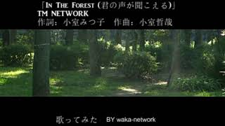 「In The Forest (君の声が聞こえる) 」TM NETWORK 歌ってみた BY waka-network