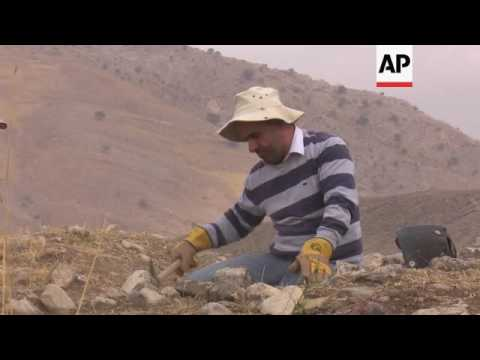Archaeology team finds pre-Islamic site in Iraq