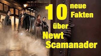 10 NEUE FAKTEN über Newt SCAMANDER