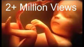 Kaun Hoga Tu | Pregnancy Music | Garbh Sanskar | A must listen | 2.5M views(25 Lac)