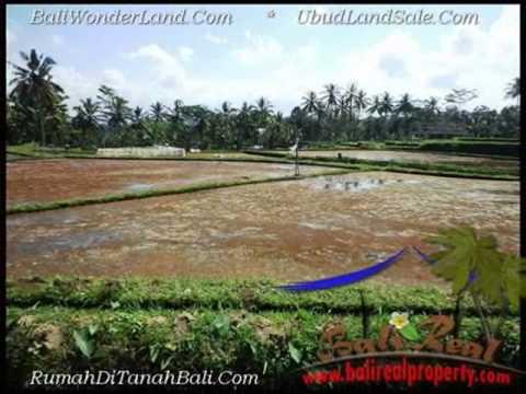 Beautiful 1,000 m2 LAND SALE IN UBUD BALI TJUB501