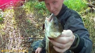 Рыбалка на горной реке в хабаровском крае