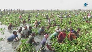 FISHING ADVENTURES in (DHAKA) BANGLADESH DOCUMENTARY