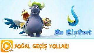 SU ELÇİLERİ | DOĞAL GEÇİŞ YOLLARI | TRT ÇOCUK