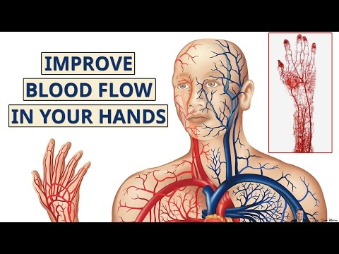 How To Increase Blood Flow To Hands And Fingers