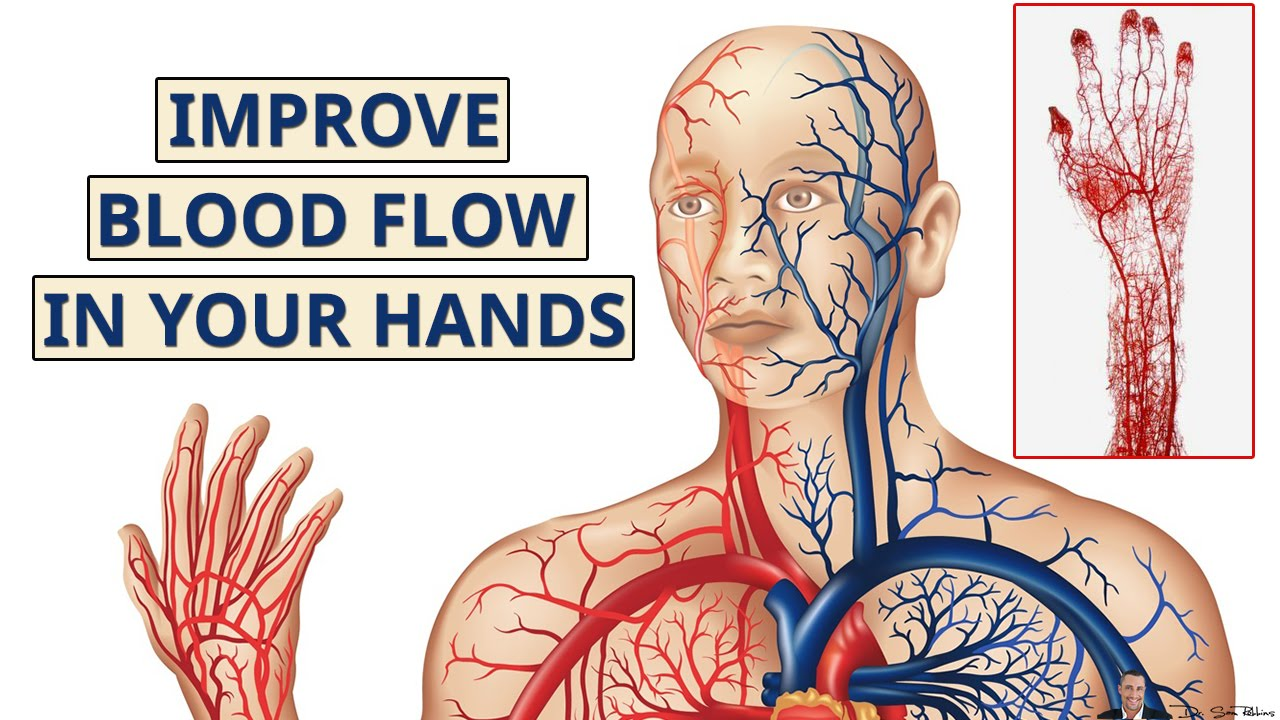 How To Increase Blood Flow To Hands And Fingers Youtube