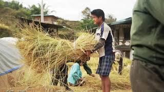 Agricultural landscape protection and management, Radhi, Trashigang