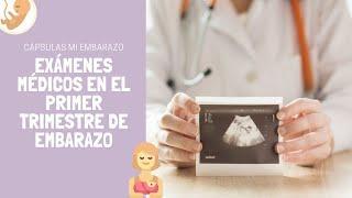 Exámenes médicos en el primer trimestre de embarazo | Cápsulas Mi Embarazo