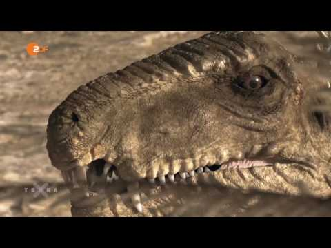 ZDF Terra X - Sternstunden der Evolution II/III Untergang und Neubeginn