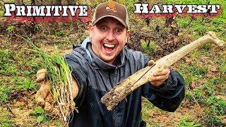 7 Day $100 Walmart Survival Challenge - Day 4 - Primitive Wild Survival Food