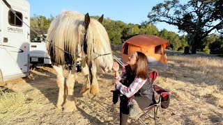Are you ready to horse camp? Getting prepared!
