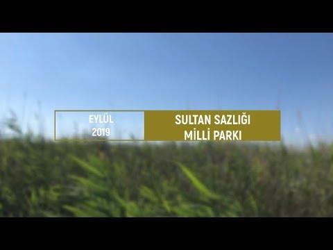 Sultan Sazlığı Milli Parkı & Kuş Müzesi | Eylül 2019