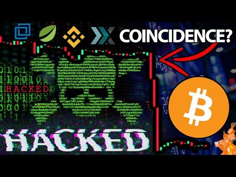 The REAL Reason Bitcoin Just Dumped!!! MAJOR Exchange Data HACKED & Sold On Darknet!