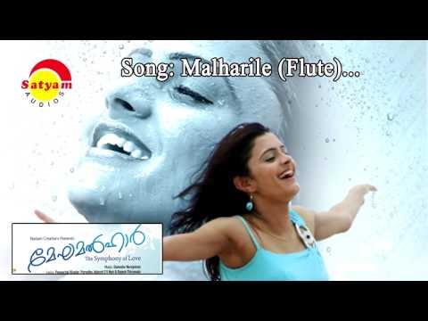 Malharile (Flute) - Meghamalhar