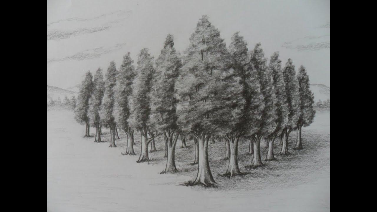 Como Dibujar rboles en Perspectiva Estudio dos puntos de fuga