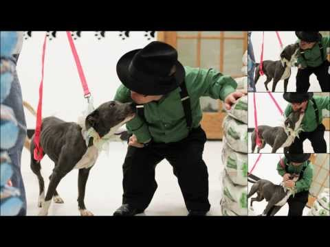 3:16 PIT BOSS Shorty Rossi and Hercules visit the Healthy Pet Center!