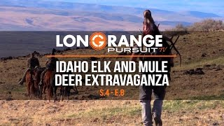 Long Range Pursuit | S4 E8 Idaho Elk and Mule Deer Extravaganza