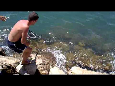 Pesca dorada algeciras youtube for Cristalerias en algeciras