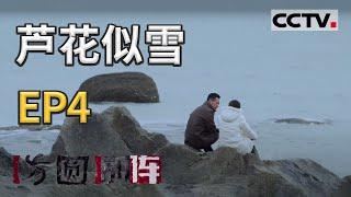《方圆剧阵》芦花似雪 第二季 EP4 20210204   CCTV社会与法