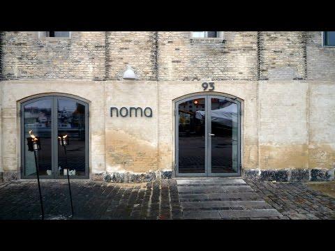 Foraging at Noma