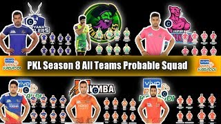Pro kabaddi season 8 all teams probable squad, pro kabaddi season 8 all teams squad