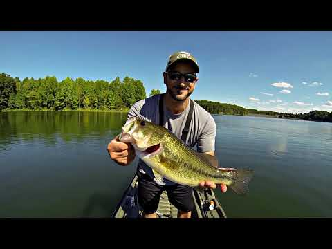 Summer Fishing Tips: How To Catch Bass In Midday Heat