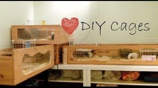 *OUTDATED* DIY Guinea Pigs Cages | PetsPalaceTV
