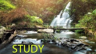 3 Hour Focus Music: Study Music, Alpha Waves, Calming Music, Concentration Music, Relaxation ☯1842