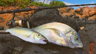 Catching & Cooking Hawaiian Reef Fish (...