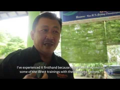 An Interview With Gembong Danudiningrat: Asian Agri & Smallholders