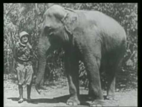 1923 Stan Laurel in Roughest Africa (part 2 of 3)