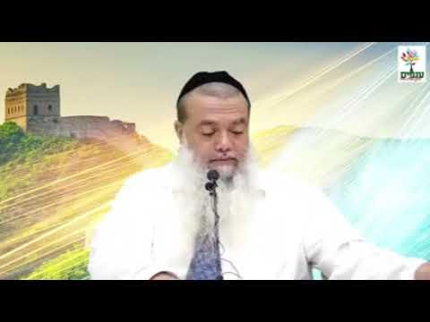 """חידושים לפרשת השבוע שלח לך הרב יגאל כהן שליט""""א"""