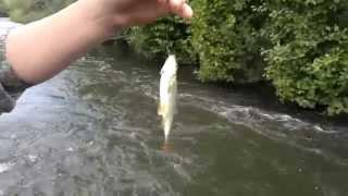 Необычная Рыбалка: Эпизод 1. Ловля рыбы на ручейника.
