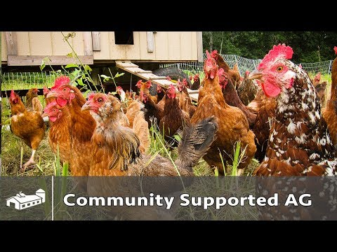 A Different Community Supported Agriculture - GFP S1:E4