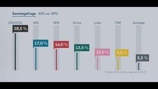 INSA-TREND: AfD überholt SPD in Meinungsumfrage